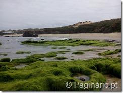 Parque Natural do Sudoeste Alentejano e Costa Vicentina - Almograve